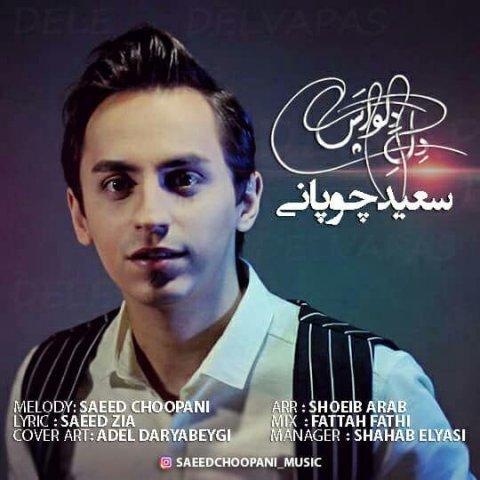 دانلود آهنگ جدید سعید چوپانی به نام دل دلواپس