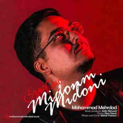 دانلود آهنگ جدید محمد مهرداد به نام میدونم میدونی