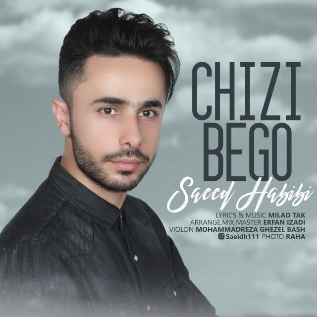 دانلود آهنگ جدید سعید حبیبی به نام چیزی بگو