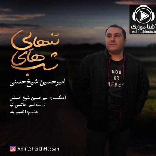آهنگ امیرحسین شیخ حسنی شبهاى تنهایى