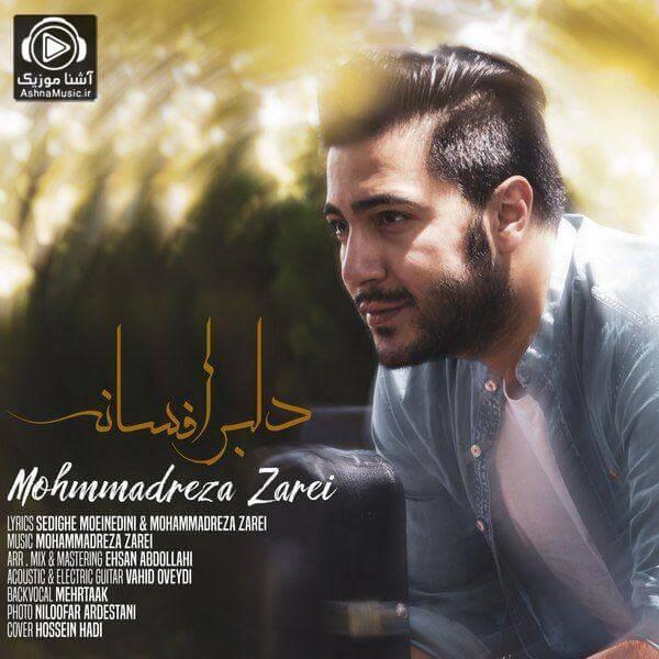 آهنگ محمدرضا زارعی ای دلبر افسانه ای منطق دیوانه